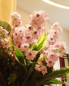 Springtime in Plaza Athénée's lobby!