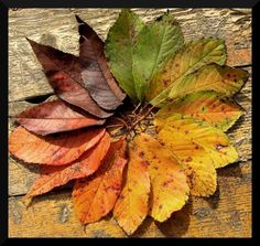 Legends of the Fall II by ~Ariagne - Autumn colors are simply fabulous