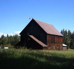 Barn in the summer.