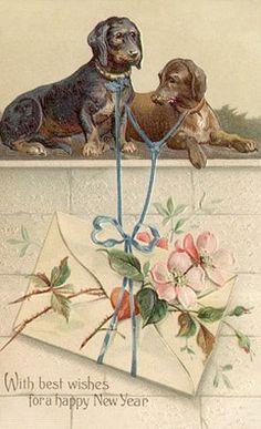 Vintage Postcards, Vintage Art, Decoupage, Moose Art, Pets, Dachshunds, Painting, Animals, Insects