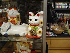 The Lucky Cat  Maneki-Neko