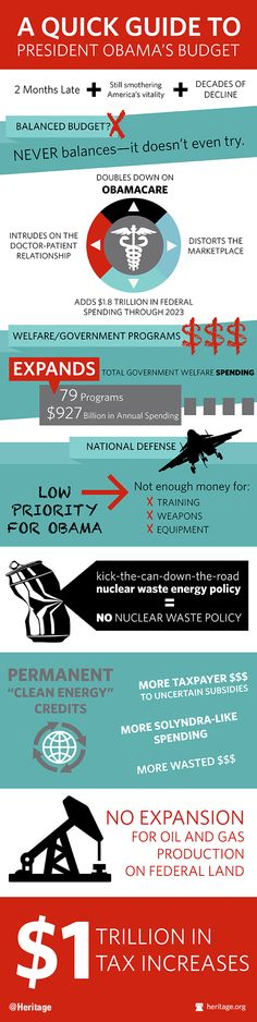 The Obama Budget Infographic