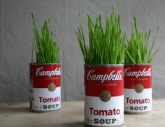 I love this! Wheat grass in super simple Campbells Tomato Soup cans, GENIUS!