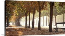 Autumn in Paris, France photography from the Champs Elysees Big Canvas Art, Framed Canvas Prints, Canvas Frame, Art For Sale Online, Panoramic Images, Autumn Photography, France Photography, Photography Ideas, Champs Elysees
