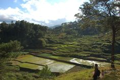 51 Unbelievable Photos Of The 2,000-year-old Philippine Rice Terraces