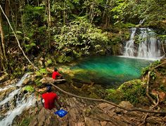 Belize Jungle Hiking Tours | Cockscomb Basin | Mayflower Bocawina