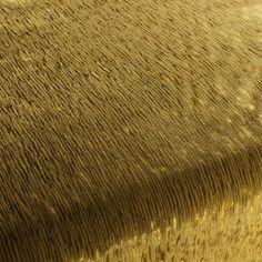 ASTRO VELVET CA7955/030 from Carlucci