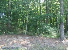 Land for sale at Falls Rd., Crossville, TN 38571  - Zaglist.com® #LandForSale #Land #ForSale #zaglist #Crossville #Realestate Find Property, Property For Sale, Crossville Tn, Cumberland County, Land For Sale, Townhouse, Real Estate, Plants, Terraced House