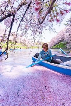 Chidorigafuchi boat rental during cherry blossom season, Tokyo, Japan #sakura #cherryblossom #spring #Japan #travel #guide #TheRealJapan  #Japanese #howtotravel #vacation #trip #explore #adventure #traveltips  #traveldeeper www.therealjapan.com