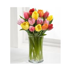 The Rush of Color Assorted Tulip Bouquet will bring a bright splash of color to their special occasion or celebration. Our finest tulips arrive in assorted colors with a glass vase to create a splendid bouquet that will add to the beauty of their day. Easter Flowers, Mothers Day Flowers, Tulips Flowers, All Flowers, Fresh Flowers, Spring Flowers, Send Flowers, Purple Tulips, Purple Glass