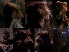 Splinter from the TMNT 1990 movie Splinter, Tmnt 1990 Master Splinter, 1990 Movies, Top Rated Movies, Special Characters, Guilty Pleasure, Teenage Mutant Ninja Turtles, Tmnt, Movies Showing, Live Action