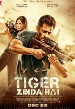 Tiger zinda hai 2017 movie mp3 songs free download in 128 kbps tiger zinda hai izle tek para 1080p tiger zinda hai full hd sansrsz izle altavistaventures Image collections