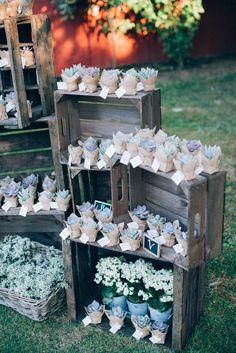 Succulentes- Escort card © ingridlepan.com