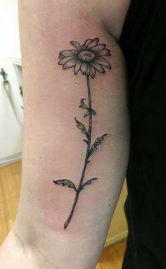 daisy tattoos google search daisies pinterest g nsebl mchen skizzen und malerei. Black Bedroom Furniture Sets. Home Design Ideas