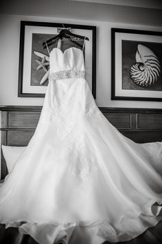 Serendipity Events | Meurer Image Photography