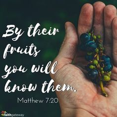 "But the fruit of the Spirit is love, joy, peace, forbearance, kindness, goodness, faithfulness, gentleness, and self-control. — Galatians 5:22-23 Fruit is the delectable product of that which is created by the inner life of the vine. On the eve of the Crucifixion, the Lord Jesus put it thus: Abide in Me, and I in you.<a href=""http://www.faithgateway.com/fruit-spirit/"" title=""Read more"" >...</a>"
