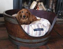 long haired dachsund <3 and love the bed :)