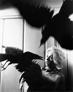 Tippi Hedren in The Birds, photographed by Philippe Halsman, 1963.