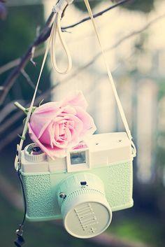 vintage green camera & pink rose