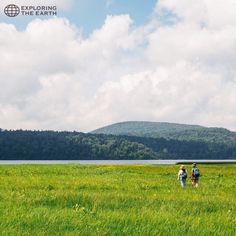 Exploration & Photo by @menghao Location / Oze National Park, Gunma, Japan
