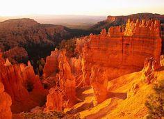 Grand Canyon, Arizona, USA - Beautiful Places to Visit Grand Canyon Arizona, Bryce Canyon, Flagstaff Arizona, Arizona Usa, Arizona State, World Most Beautiful Place, Beautiful Places To Visit, Places To See, Amazing Places