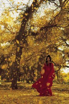 Red Kimono (from the film, Hero)