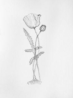 inked flower