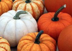 Pumpkin Ultimate Detox Food