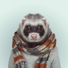 Ferret Zoo Portrait by Yago Partal