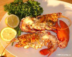 Baking Lobster