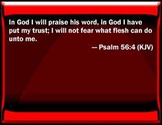 Image result for Psalm 56:4 kjv