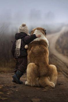 Te lo prometto, ti proteggerò sempre. #SanBernardo K