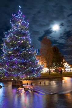 Christmas tree in the river. Bourton-on-the-Water, England. Christmas In Britain, English Christmas, Blue Christmas, Winter Christmas, All Things Christmas, Christmas Lights, Vintage Christmas, Christmas Time, Xmas