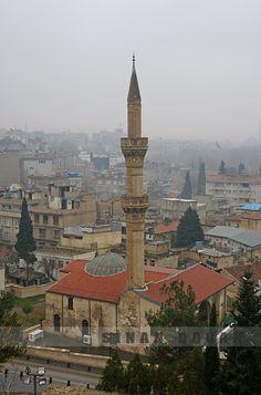 Şirvani Mosque. Gaziantep 16