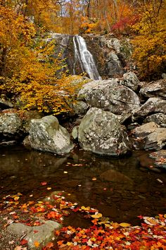 The middle of the three Upper Whiteoak Falls. Shenandoah National Park, Virginia, Fall, Autumn, National Parks, How To Plan, Photo And Video, World, Nature