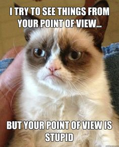 I try to see things from your point of view... - Grumpy Cat