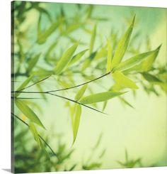 Bamboo In The Sun by Priska Wettstein #print #homeDecor #green