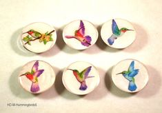 Hummingbird Kitchen Magnets, Fridge Magnets, Refrigerator Magnets