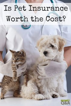 Is pet insurance worth the cost? It's a hard decision to care for a beloved pet. Here's what you need to know about pet insurance costs and determining if it's right for you. Pet Health Insurance, Best Pet Insurance, Insurance Business, Insurance Benefits, Insurance Quotes, Puppy Care, Dog Care, Horse Care, Feline Leukemia