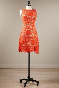 I think I may need this...Versona floral lace dress #Versona