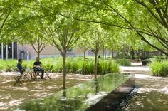 The courtyard of Rice University's Brochstein Pavilion. (For more photos of Houston landscapes and landscapes-in-the-making, scroll through the gallery.) Photo: Paul Hester / © 2009 Hester + Hardaway