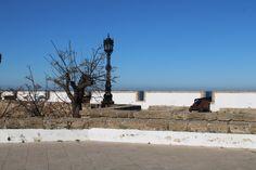 baluarte de san carlos Beach, Water, Plants, Outdoor, San Carlos, Cities, Fotografia, Gripe Water, Outdoors