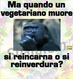 quando muore un vegetariano...