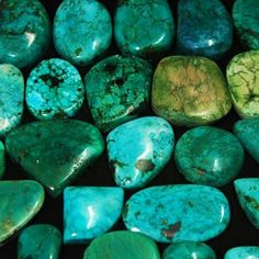 1027Ct/23pcs Deluxe Rare Natural Turquoise Loose Gemstones Lot~Ring/Pendant Size