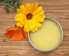 How To Make Calendula Salve from the Herbal Academy - Calendula is an herb that is very gentle on the skin and perfect for scrapes and bug bites. Learn how to make a heal-all calendula salve! Herbal Remedies, Health Remedies, Natural Remedies, Natural Treatments, Healing Herbs, Medicinal Herbs, Natural Healing, Herbal Tinctures, Herbalism