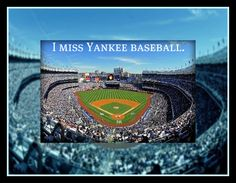 odds & ends Yankees