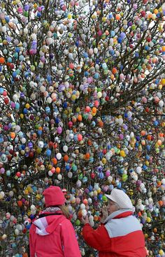 A tree decorated with 10,000 eggs.