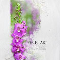lkdavis_Photo Art: