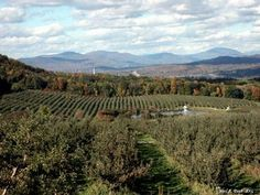 Beautiful countryside in Bennington, Vermont