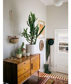 Your green plant friends don't always belong on the ground. Give the space some height by putting your plant and fabulous pot up on a table or even on a stool #wishiwasalittlebittaller #plantlife #designtips #indoorplants |pic via #Pinterest #sourceunknown . . . . . . #planneraddict #plantbased #plantsarefriends #plantsareawesome #bohostyle #bohemiandecor #bohemian #bohohouse #bohoaddict #bohochic #bohogypsy #bohoinspo #interiorinspo #cactusstyle #cactuslife #stylingideas #cactus…